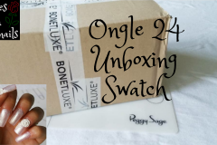 Ongle-24-Unboxing-roses-on-the-nails
